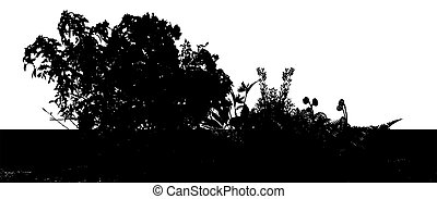 Foliage - Silhouette of foliage with white background made...