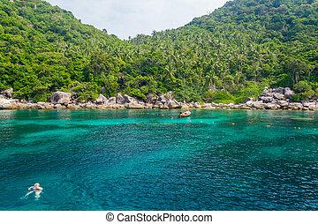 Tropical island Koh Tao, Thailand - Beautiful sea at...
