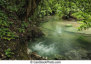 Rio Celeste-Borbollone - Borbollone or bubbling hot spring...