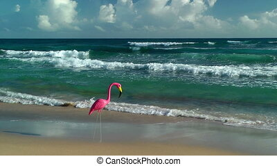 Plastic flamingo on Isabel Beach in Puerto Rico