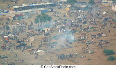 Pushkar Camel fair - View to the Puskar Camel fair from the...