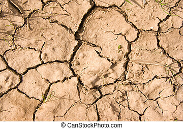 dried earth