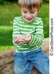 Little boy holding sunflower seeds in garden - Little boy...