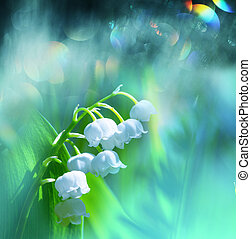 Lily of the valley - Lilly of the valley