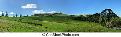 Panoramic hill landscape in Shakespear Regional Park near...