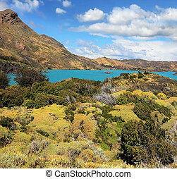 Yellow and green hilly lakeside Pehoe - National Park Chile...
