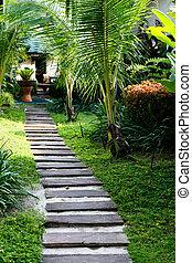Garden path - Lush tropical garden with a stone path.