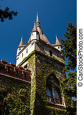 Copy of historical castle in Budapest, Hungary. Agricultural...