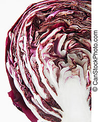 close up of the purple cabbage on the white background