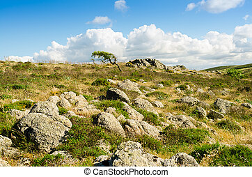 Gerrei - Landscape of countryside outdoor in Sardinia