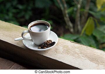 Kopi Luwak - Cup of Kopi Luwak, world's most expensive...