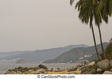 Pacific Ocean coast with palm trees