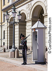Protection of the Royal Palace in Oslo. Norway