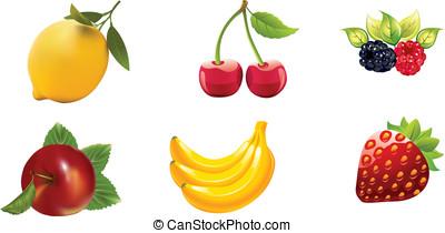 Fruts Vector