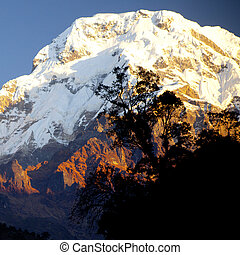 Beautiful landscape in Himalayas at the sunrise time, Annapurna area, Nepal