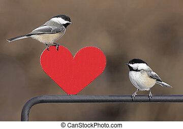 Pair of Birds With Heart - Pair of Black-capped Chickadees...