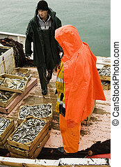 Fishermen on trawler boat - Picture shows two fishermen on a...