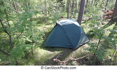 tent in forest - Tourist tent in forest camp