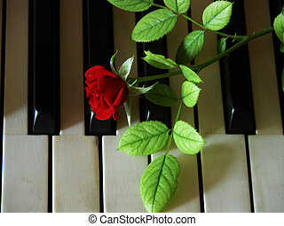 Rose Bud & Antique Piano - A red rose bud is displayed upon...