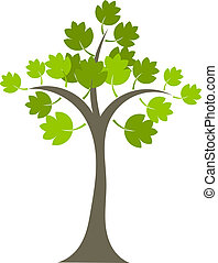 Maple tree with green leaves isolated over white. Vector