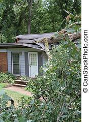 White Oak Fallen on a House