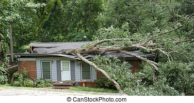 Oak Tree Smashes House - A heavy white oak tree falls and...