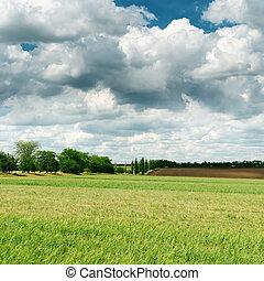darken clouds over spring green field