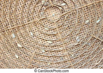 dried cocoons in threshing basket - Dried cocoons in...