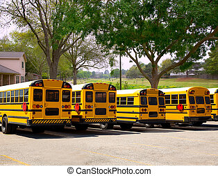 American typical school buses row in a park outdoor -...
