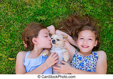 twin sisters playing with chihuahua dog lying on lawn - twin...