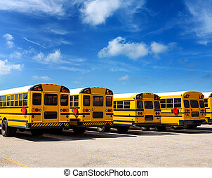 American school bus row under blue sky - American typical...