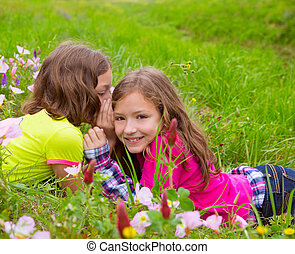 happy twin sister girls playing whispering ear in meadow -...