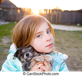 Blond children kid girl playing with puppy dog chihuahua -...