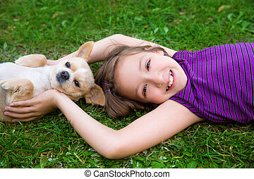 children girl playing with chihuahua dog lying on lawn -...