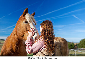 Girl petting a horse in the paddock on a bright sunny day