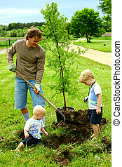 Father and Sons Planting Tree - A father and his two sons, a...