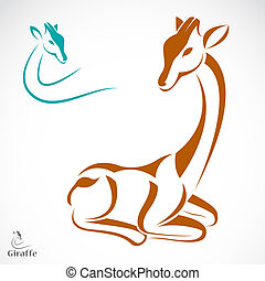 Vector image of an giraffe on white background