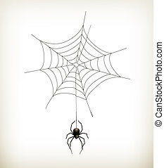 Spider and web, vector
