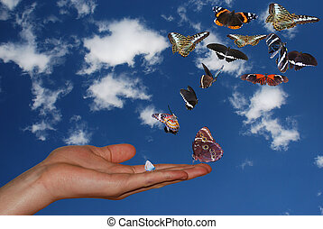 hand with sky and many butterflies - hand with blue sky and...