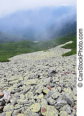 Mossy moraine on the mountainside in Carpatians - A large...