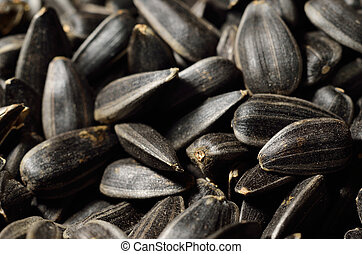 Close-up of black oil sunflower seeds
