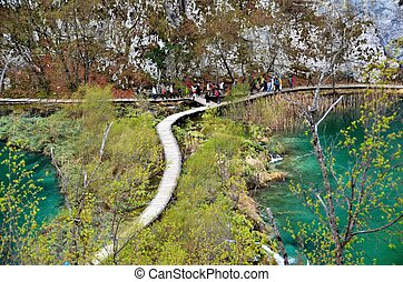 Rich Colors of the Plitvice Lakes National Park, Croatia -...