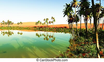 oasis - Beautiful natural background - African oasis