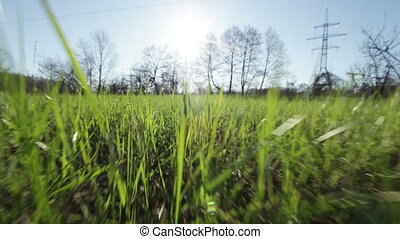 Movement through the grass - Camera moves toward the sun...