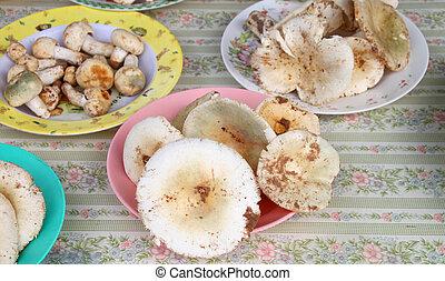 Edible mushrooms