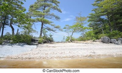 Lake in Forest, No Sound. High definition. Location:...