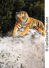 stuffed animal - stuffed toy on snow bank