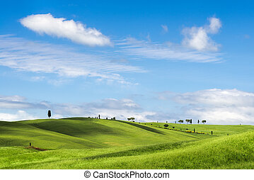 View of the scenic Tuscan countryside