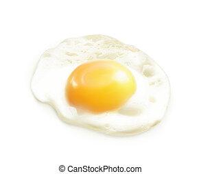 Fried egg, vector