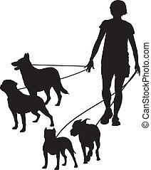 Women and dog - vector illustration women as walking the...